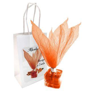 Ambientador tipo Mikado olor Naranja y Canela con flor, incluye bolsa